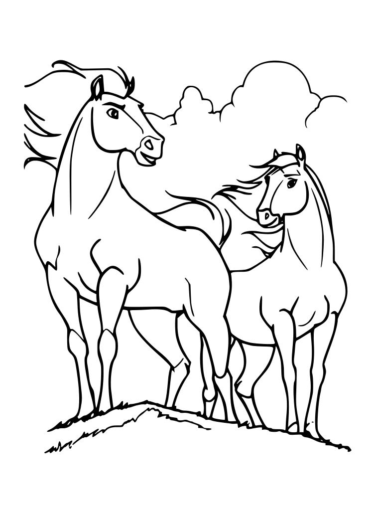 Dibujos para colorear pintar imprimir caballos for Immagini cavalli da disegnare