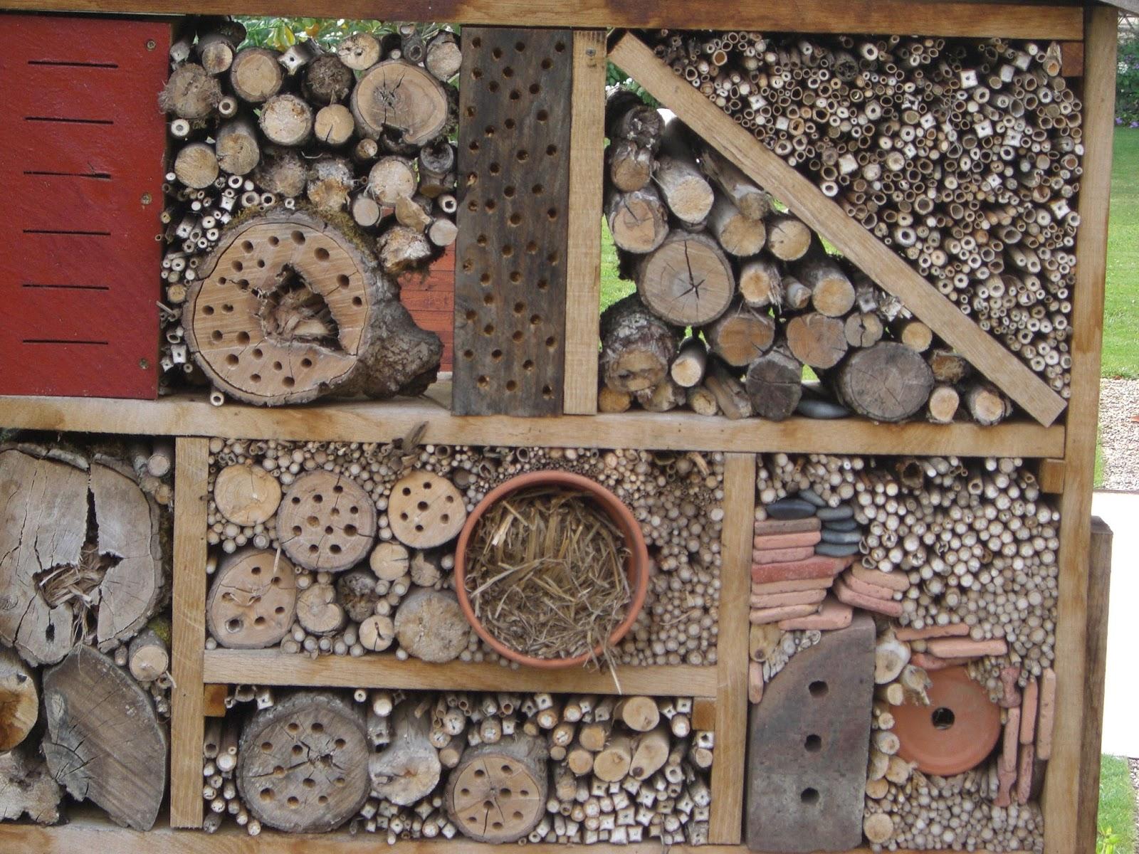 si la rose construire un h tel insectes. Black Bedroom Furniture Sets. Home Design Ideas