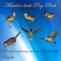 Meadow lark PNG pack tubes birds