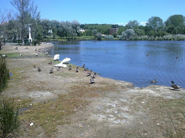 Laguna de Mera en Oleiros