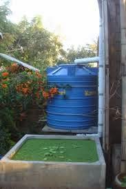 cara mengumpulkan air hujan, cara memanfaatkan air hujan