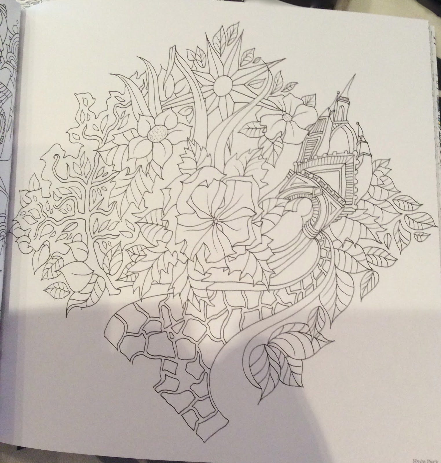 I Chose This Picture Of Hyde Park London To Colour First
