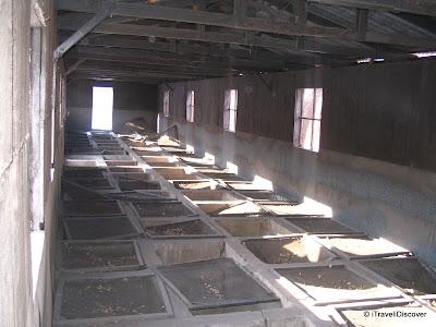 Yellow Rats Breeding Room Unit