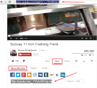 how to get video from you tube to your site