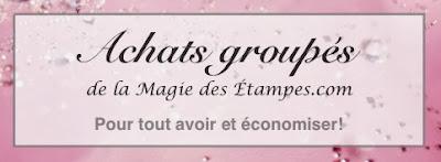 http://www.lamagiedesetampes.com/pdf/achats_occasions.pdf