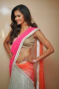 Shubra Aiyappa glamorous in half saree-thumbnail-14
