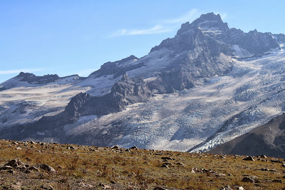 View from Burroughs Mountain to Little Tahoma