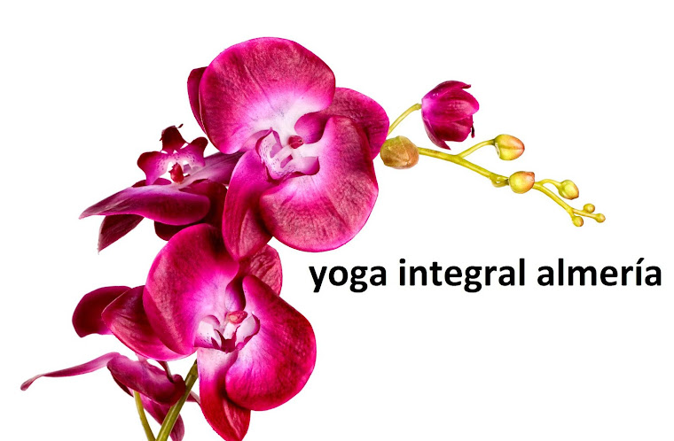 Yoga Integral Almería