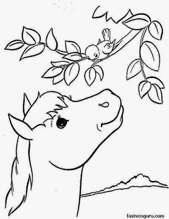 Printable Coloring Pictures Of Animals