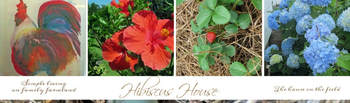 Hibiscus House