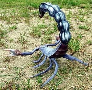 Escorpión o alacrán negro con la cola alzada