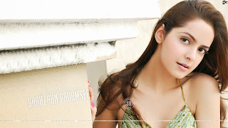 Shazahn Padamsee HD Wallpapers Download Now 2014 Wallpapers