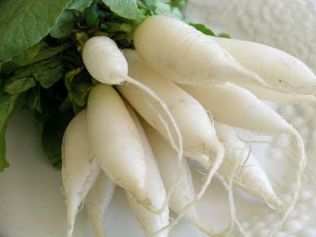 radish can prevent cancer