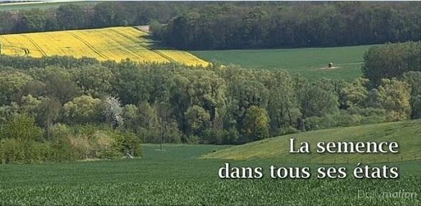 Εν αρχή ην ο Σπόρος / La semence dans tous ses etats
