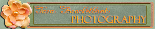 Tara Brockelbank Photography