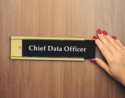 Chief Data Officer Tag