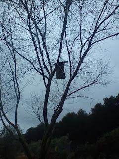 Caja nido corcho
