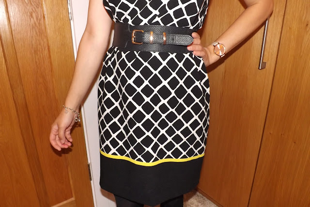 What Cat Wore   Grid Dress Detail