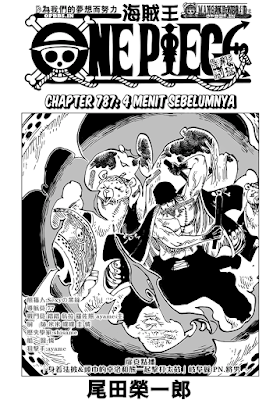 Cover One Piece 787