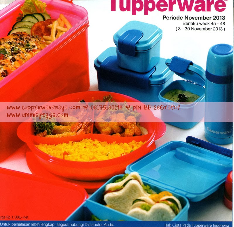 Promo Tupperware Activity November 2013
