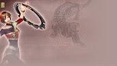 #29 Dynasty Warriors Wallpaper