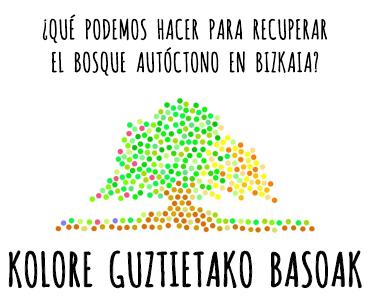 KOLORE GUZTIETAKO BASOAK