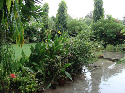 rainy seasons in india essay