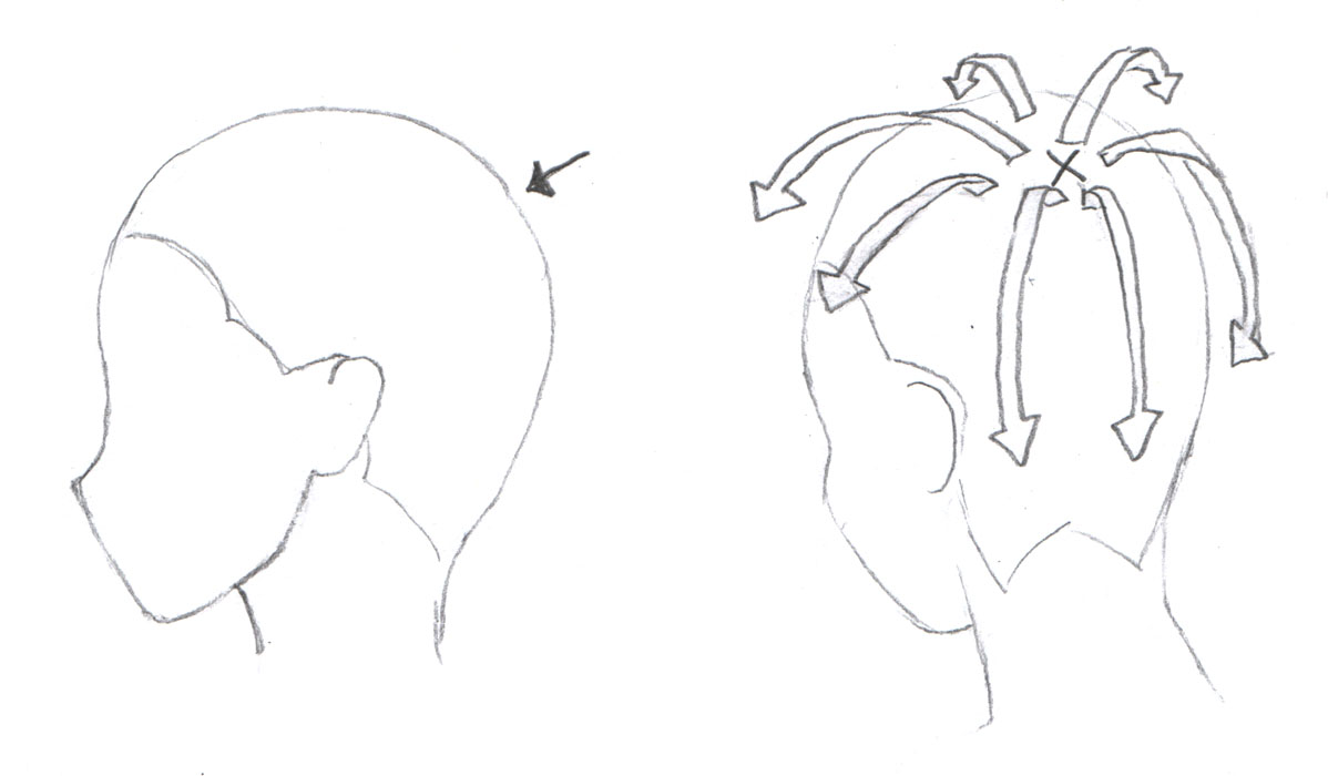 The Direction Of Hair Growth Is Typically On A Spot Behind The Back Of The  Head Look At The Picture Above To See How Hair Grow Out From The Spot  Marked 'x'