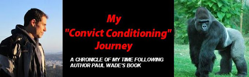 Convict Conditioning Results my Convict Conditioning