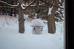 Snow Fall On Birdhouse