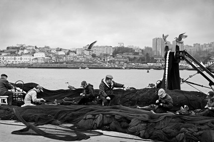 Grupo de pescadores reparando e preparando as redes pra a faina. Do lado de lá do Douro, a cidade do Porto. Algumas gaivotas em redor.