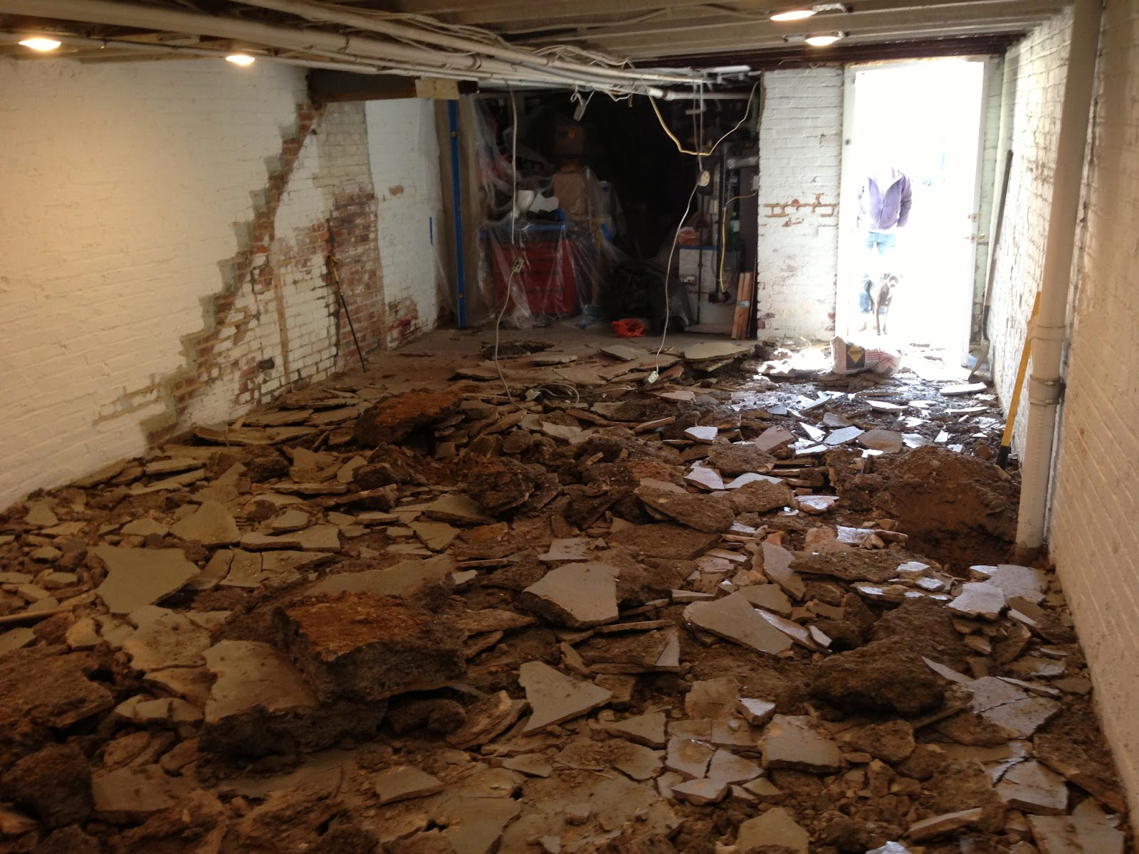 Digging Out Basement Part - 46: Petworth Row House What Do You Mean We Need A New Floor With Digging Out A  Basement.
