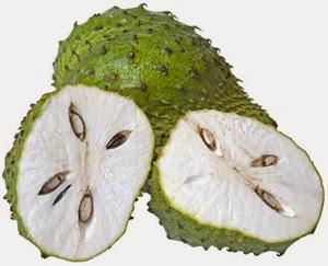 Khasiat dan Manfaat Durian Belanda