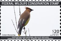 The Federal Wildlife Conservation Stamp