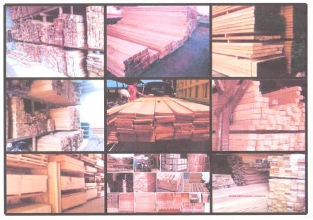 Kayu Bengkirai on Pusat Kayu Kalimantan Central Kalimantan Wood Bengkirai Merbau Kruing