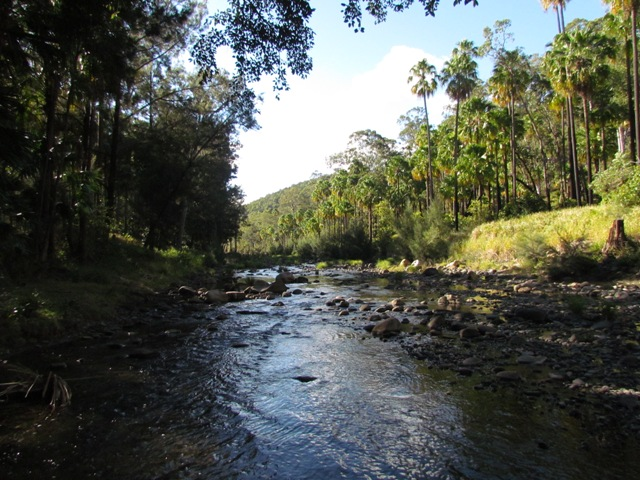 Carnarvon Creek