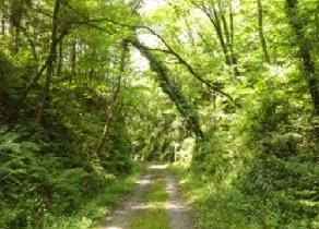 Vía Verde de los Montes de Hierro