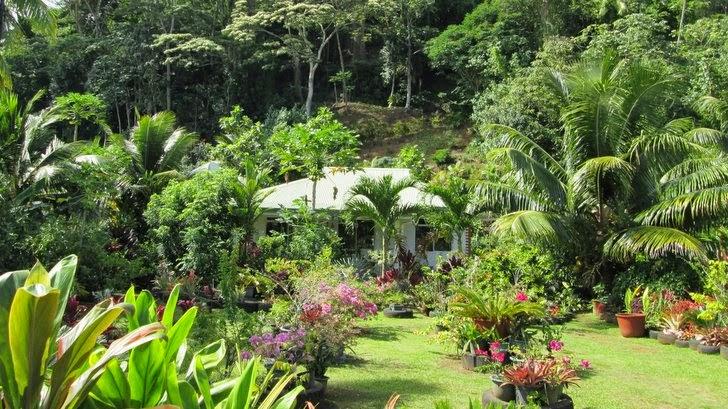 Fare à Tahiti - Jardin luxuriant