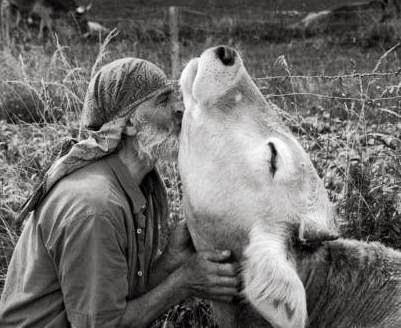 abrace a vida, seja vegetariano
