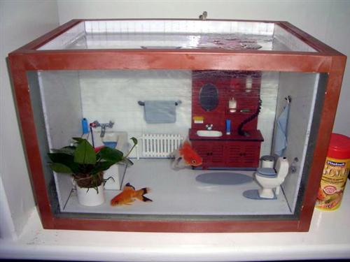 Fish Tank Torrent