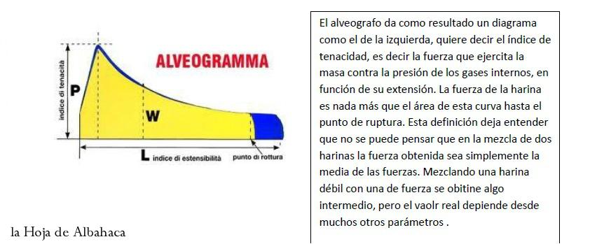 Alveologarma, W, fuerza harina, harina de fuerza