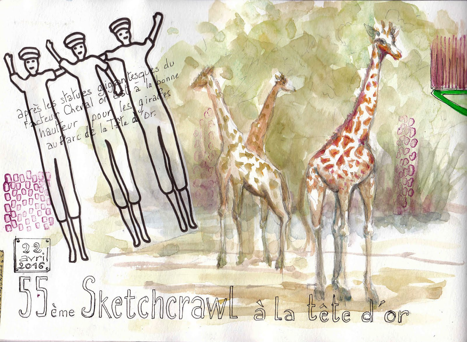 Girafes au 55e Sketchcrawl