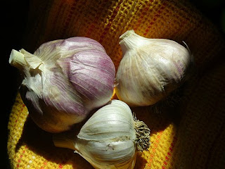 Efficacy and Benefits of Garlic