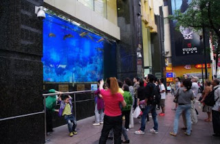 shanghai shopping mall aquarium