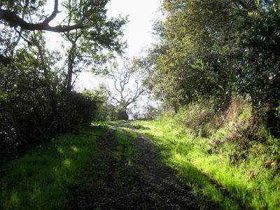 Eaton Park, San Carlos, CA