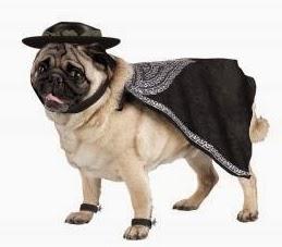 Disfraz para Mascotas, Personajes Famosos