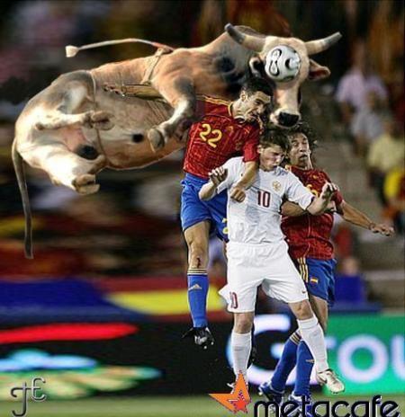 Gambar Lucu Sapi Sundul Bola  Foto dan Gambar Lucu