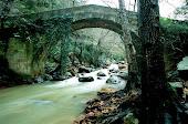 Imágenes de Algeciras