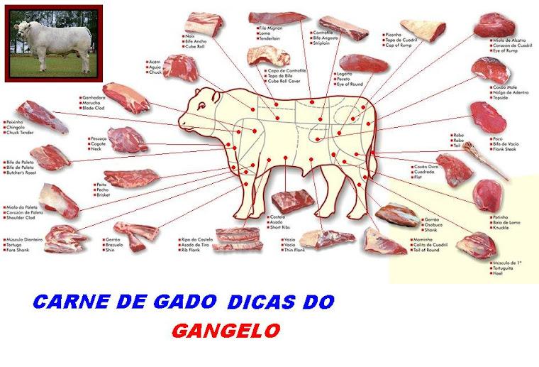 CORTES DA CARNE DE GADO