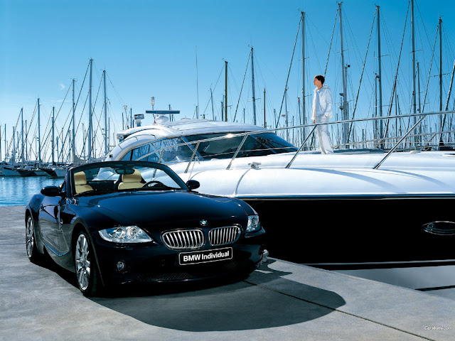 Elegant BMW Z4 photo